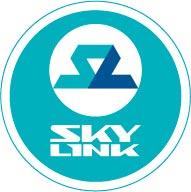 «Скайлинк» просит рассрочку на строительство сетей в регионах