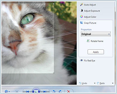 Editing a photo in Windows Photo Gallery
